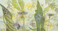 bat_lilies